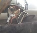 Flagra do taxista tarado agarrando a passageira